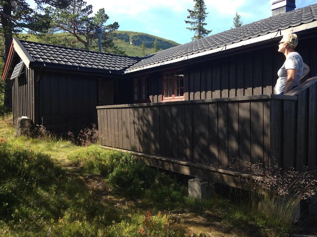 Roligheten - Veggli - Cabin