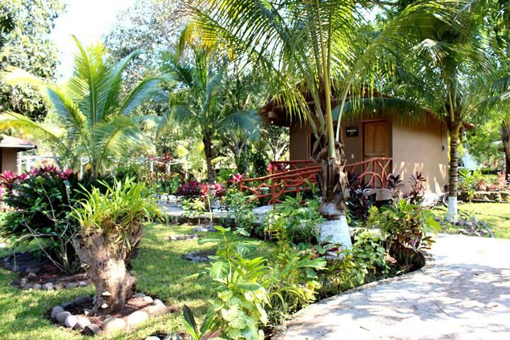 C6 Anturio Cabaña Naturaleza 1 Hab Acceso Alberca