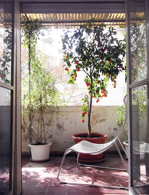 Balcony on inner courtyard with trees