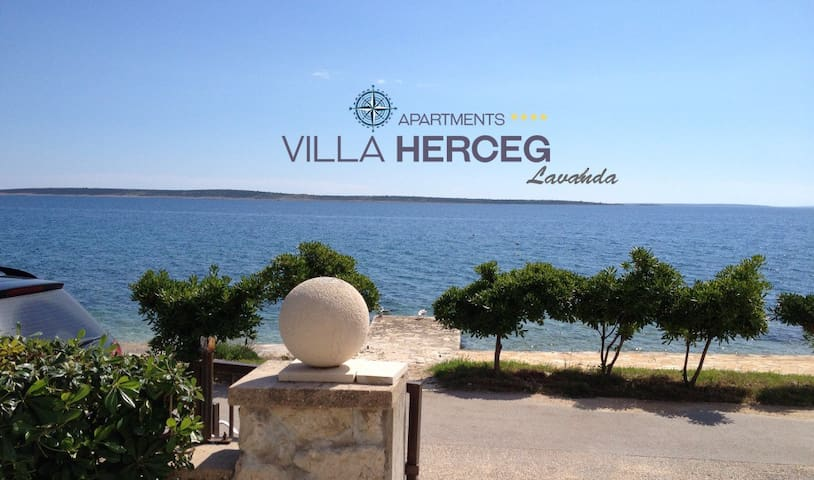 Villa Herceg - Lavanda 2+2 First row to the beach - Mandre - Apartment