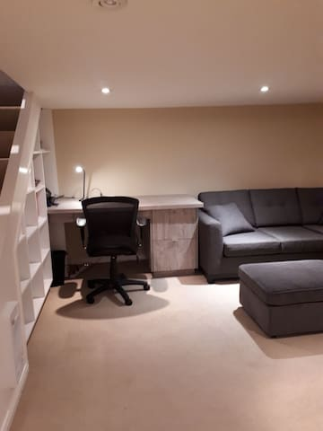 basement office and sofa bed