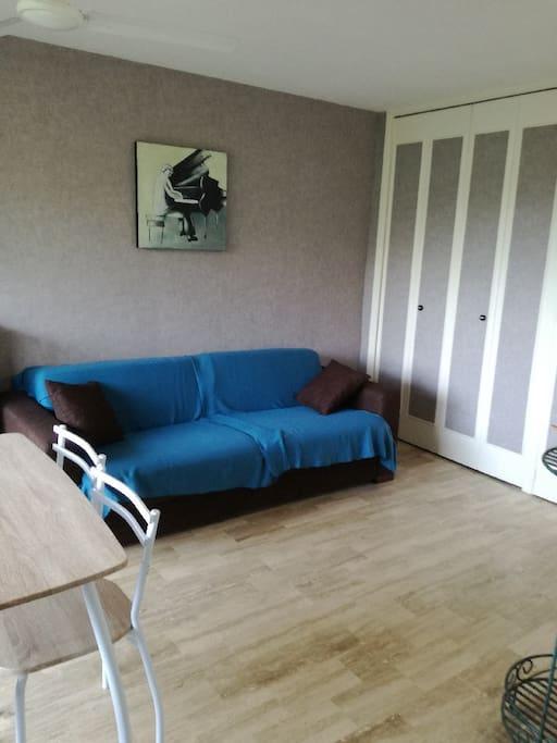 Grand canapé lit (160x190)