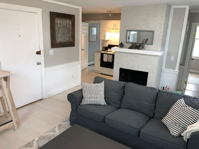 Newly renovated downtown 1 bedroom