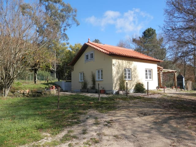 Ribeira Cottage - Oliveira do Hospital - Casa