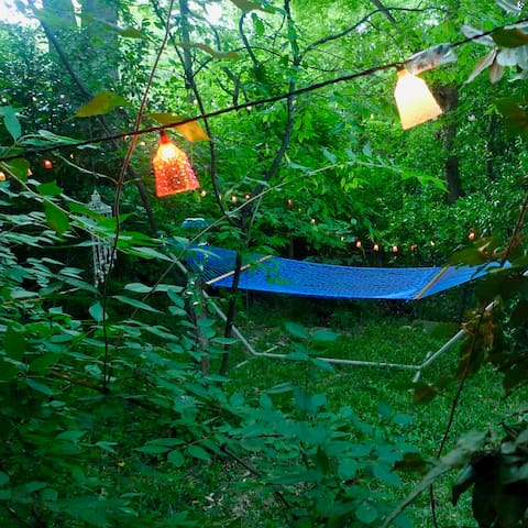 Enjoy late summer evenings Athens GA style- twinkle lights, bindsong and lightning bugs...
