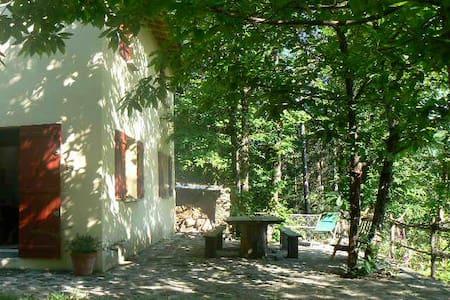 maison en pleine nature dans les cevennes - Les Plantiers - Dům