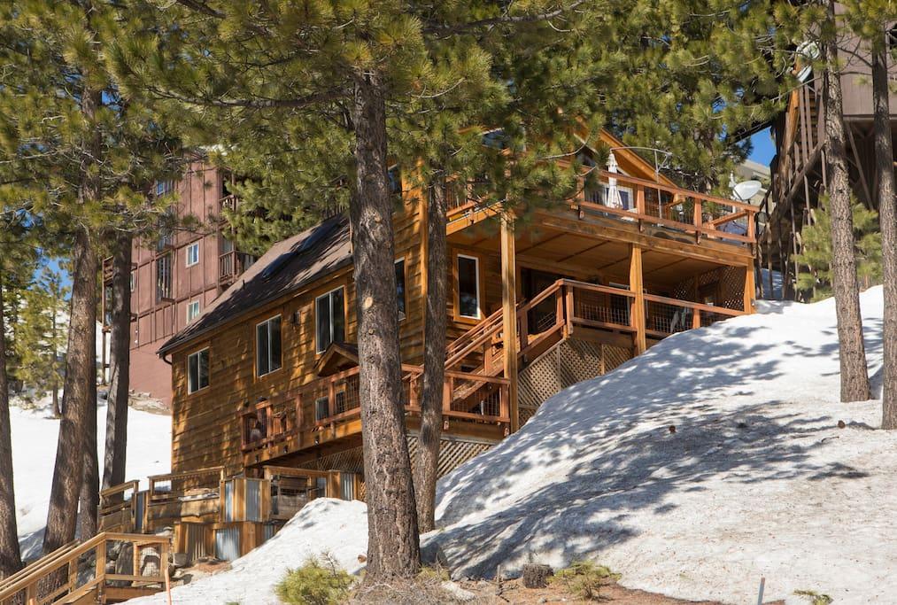 Rustic heavenly stagecoach suite condomini in affitto a for Animali domestici della cabina del lake tahoe