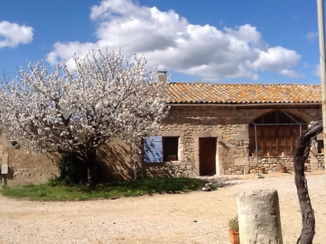 The Forge - Maussane-les-Alpilles - Andere
