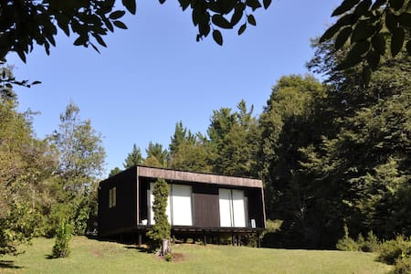 Cabaña en bosque nativo
