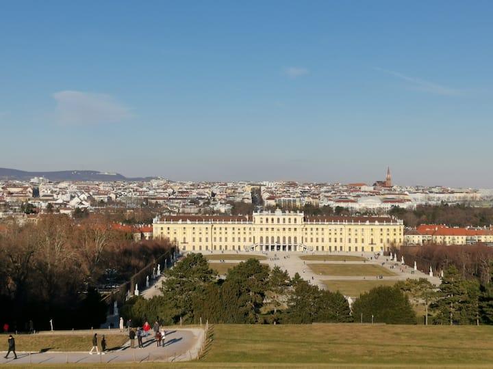 Near Vienna-1st Class Home Office-15 min to center