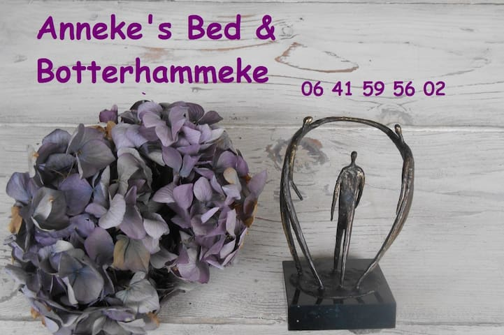 Bed & Botterhammeke Brabantse gastvrijheid! - Woensdrecht - Bed & Breakfast
