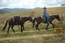 Trail rides and horse riding 20 minutes drive from the Cottage