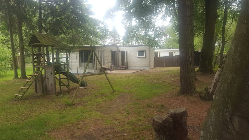 Amazing cottage in the forest of Steenbergen