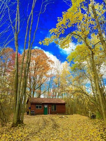Log Cabin in the Manistee Forest - Branch Township - Chatka
