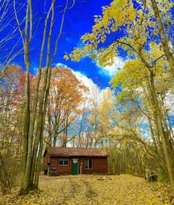 Log Cabin in the Manistee Forest - Branch Township - Zomerhuis/Cottage