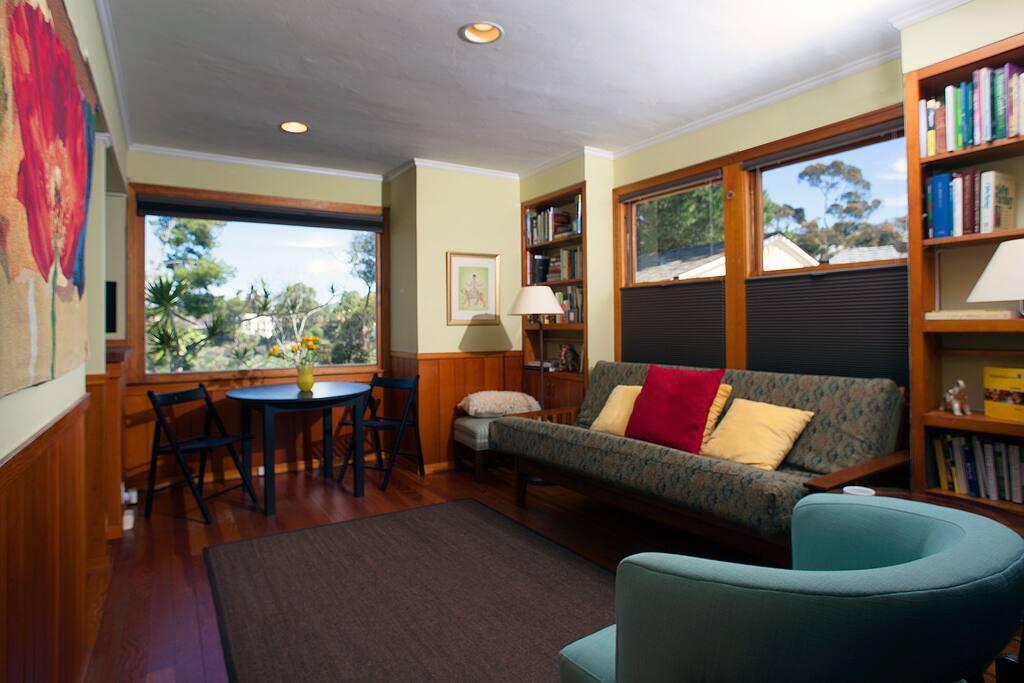Double windows with room darkening adjustable shades - shades on all windows