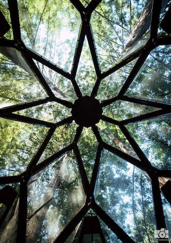 Gaze up at the kaleidoscope above you