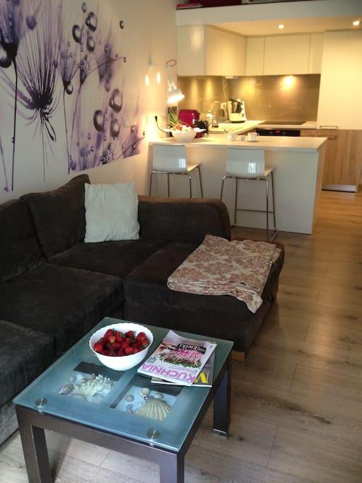 Sofa i widok na aneks kuchenny