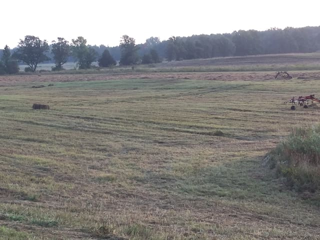35 Acre Field behind the property
