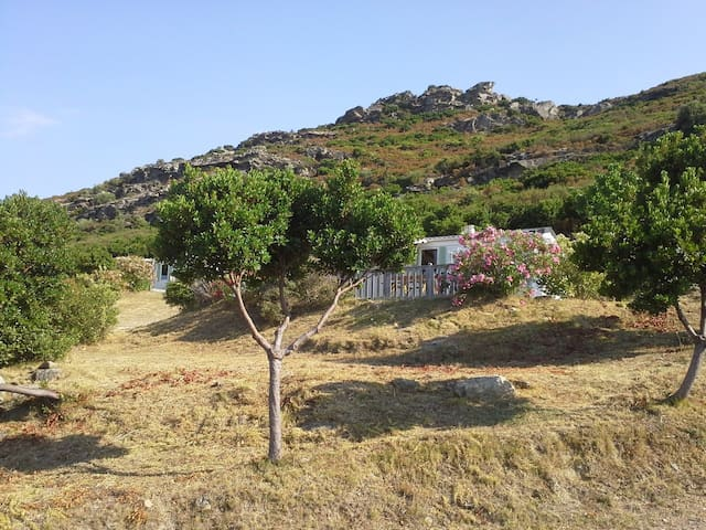 Mobile Home in the nature Close to St Florent