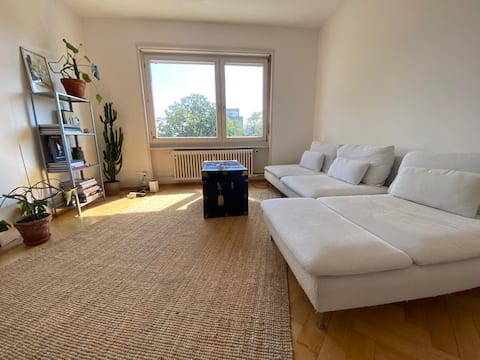 Spacious flat in Basel, next to exhibition center.