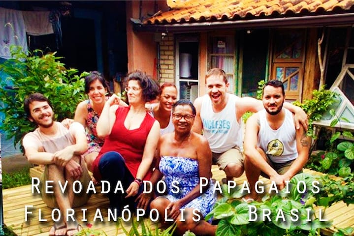 BRAZIL BACKPACKERS!Flock of Parrots