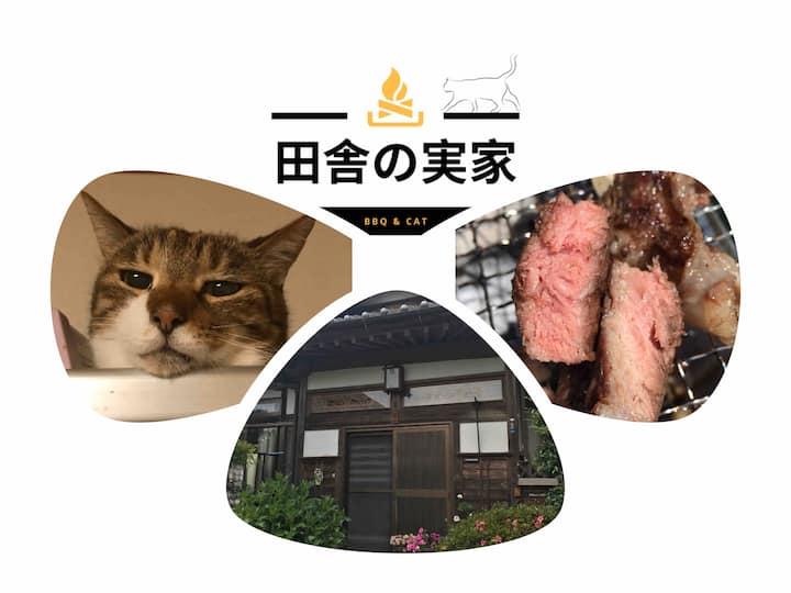 Ask me things to do Kasama Ibaraki Hitachinaka :)
