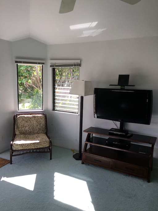 Reading Chair and Flat Screen TV with Cable and DVD