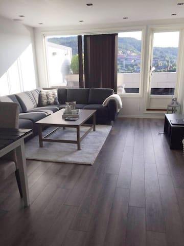 Koselig leilighet med stor terrasse.
