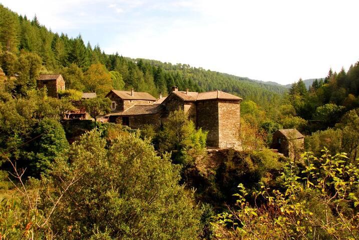 Gîte La Terrasse avec rivière - Cévennes