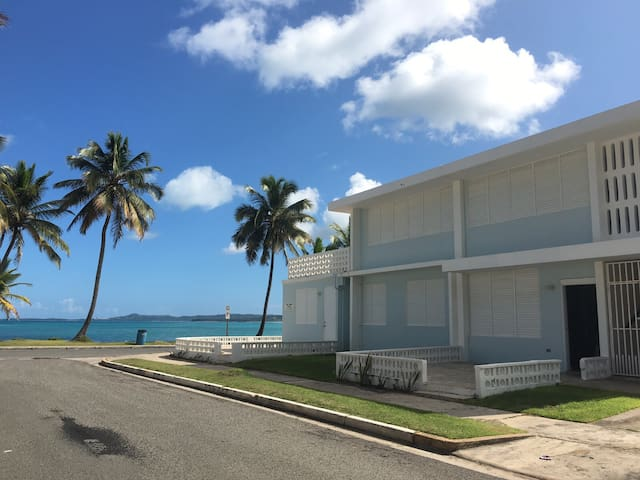 singles in luquillo county Search luquillo county, pr short sales and find a great deal on your next home or investment property see homes 30-50% below market value in your area.