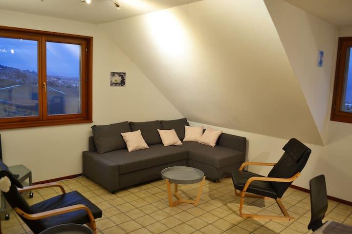 Salon avec vue sur le lac Léman et le Mont-Blanc