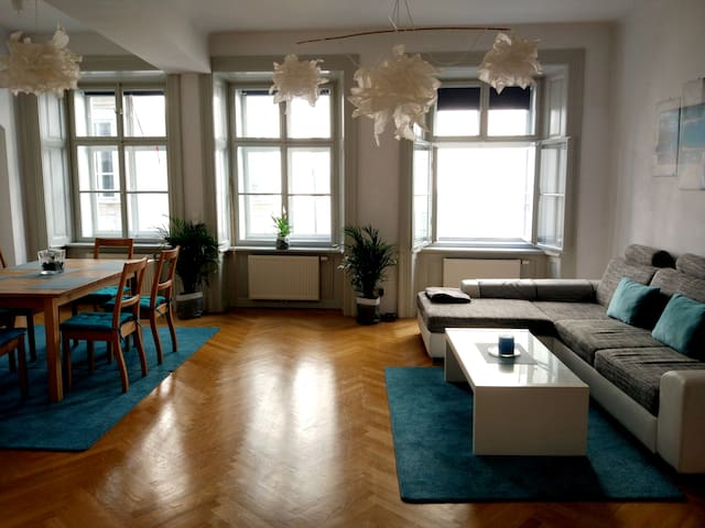 Heart of Center-Vintage(1754) Viennese Apartment 1