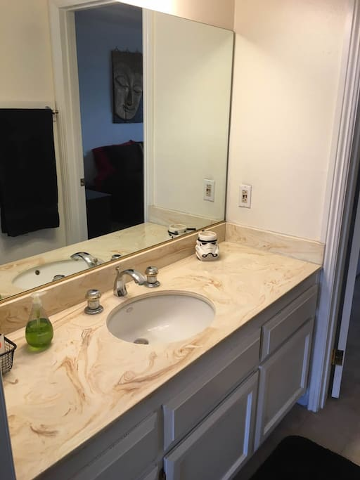 Private Bathroom for Guests (Separate Sink Area)