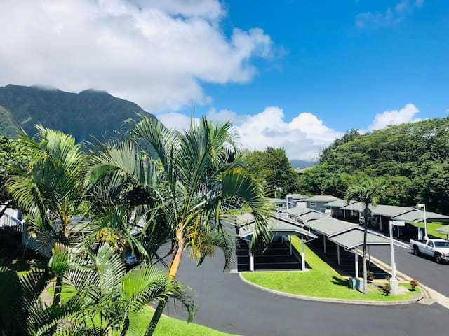 Hawaii Living in a Townhouse