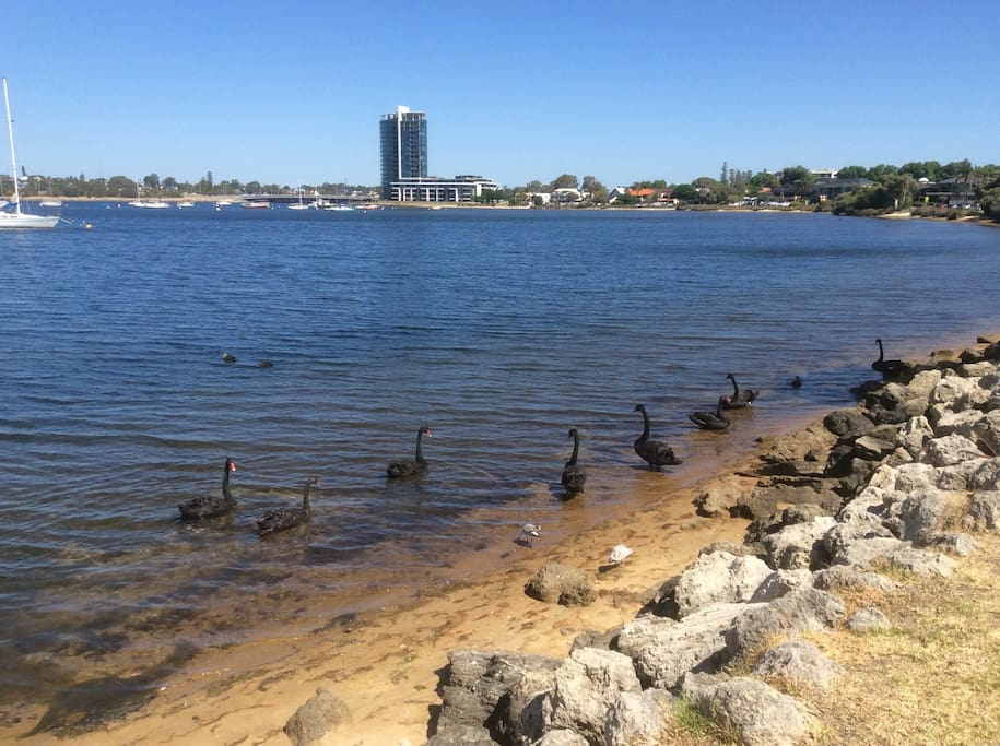 The Swan River is a short walk from the house. Raffles Hotel in the distance.
