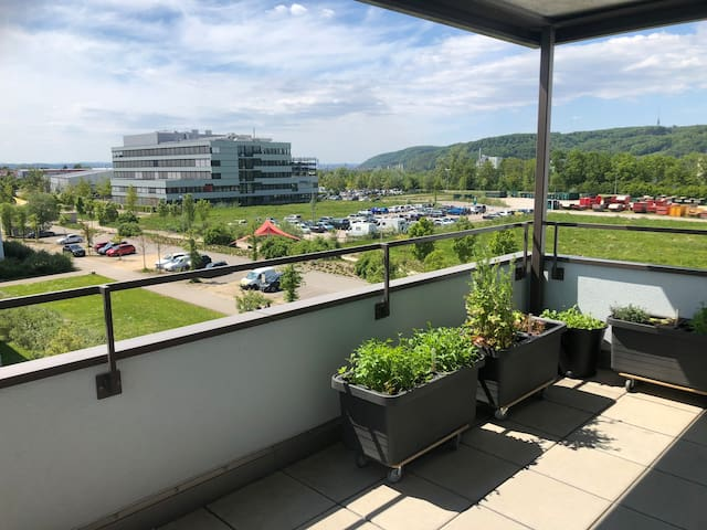Hell, modern m. Panorama-Blick auf Basel