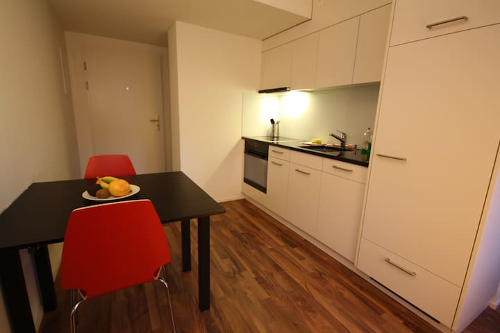 Badenerstrasse II Apartment