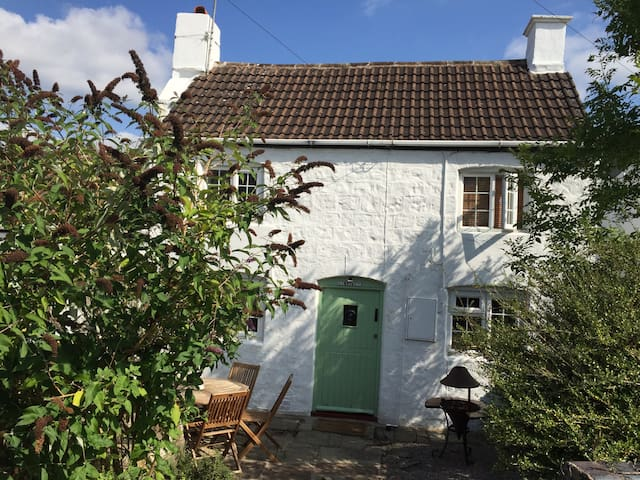 Charming 2 bed 1600s cottage , original features - Coleford - Casa