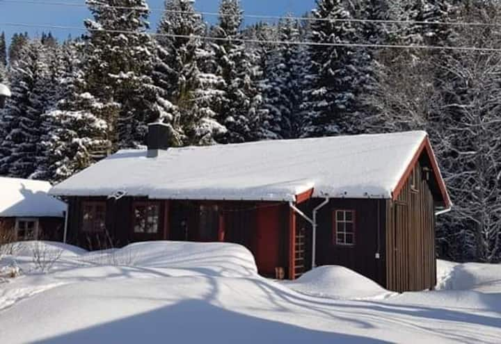 Cosy guesthouse close to alpine slopes and fishing