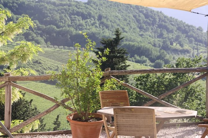★Escape!  Lovely vineyard cottage near Florence ★ - Pelago - Houten huisje