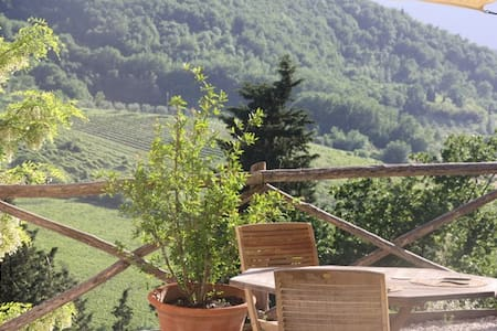 ★Escape!  Lovely vineyard cottage near Florence ★ - Pelago - 小木屋