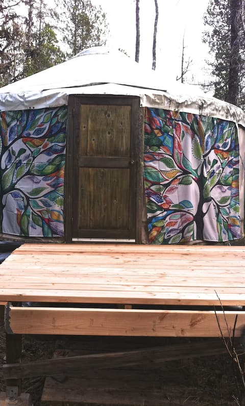 Yurt in the Woods,  Glamping in Gustavus, AK