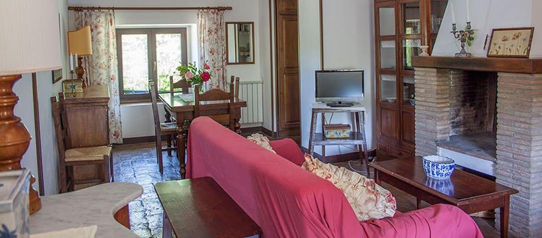 Beautiful accommodation 10 km from Bolsena Lake