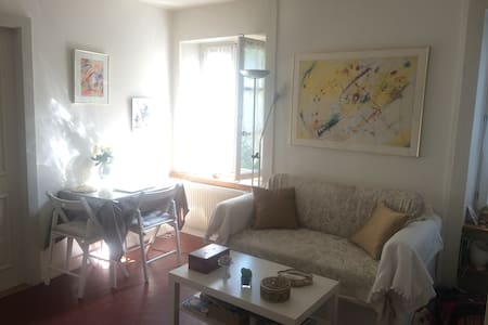 Lovely and cosy one bedroom flat in Old Carouge - Carouge