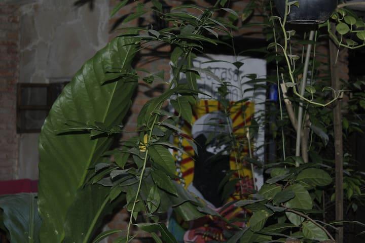 El Cuartel Zapatista La Casa del Jardín