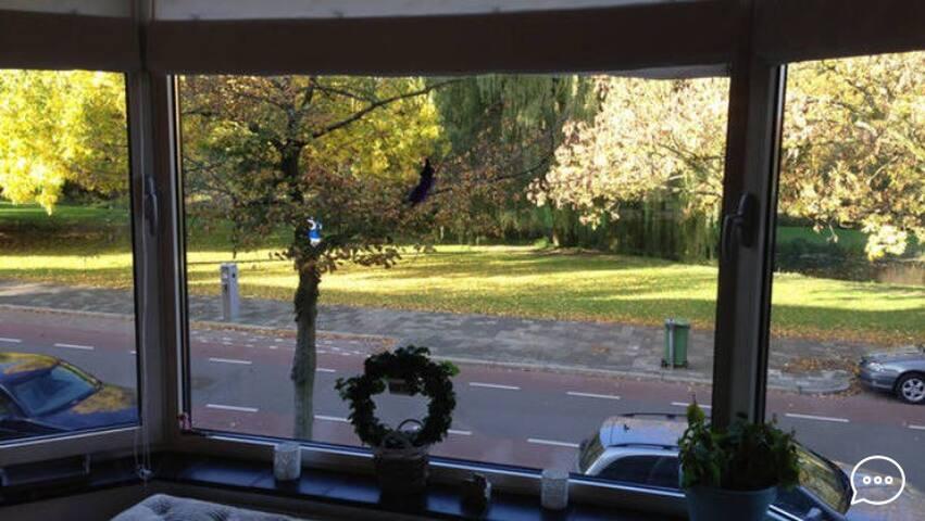 Park view room, near city center - Delft - House