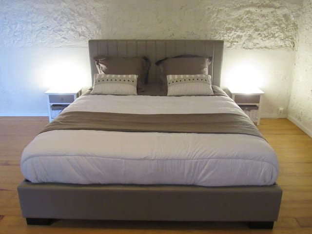 Nice bedroom 30sqm with 1 kingsize bed + 2 beds 90 - Cessieu - House