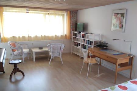Einzimmer Souterrain Wohnung mit Küche und Bad