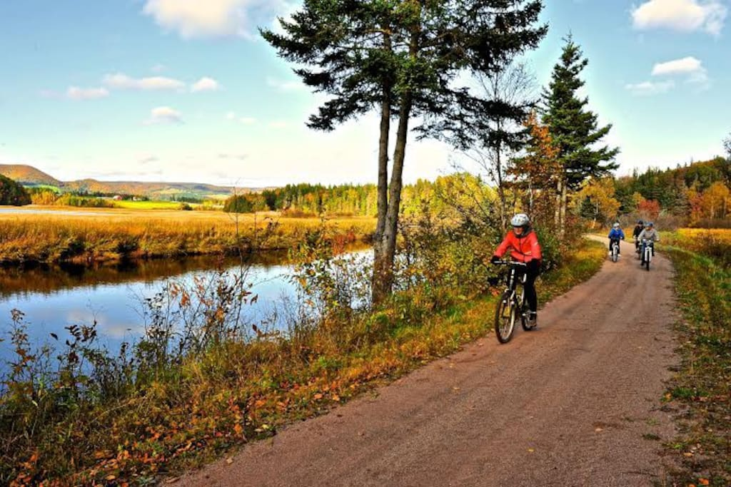 The famous Celtic Shores trail is just a quick ride away.